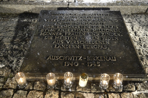 Aushwitz70th